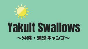【サイン穴場】沖縄キャンプ・ヤクルトスワローズ浦添市民球場攻略法2020